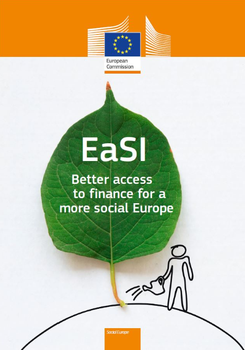 Microfinance and Social Entrepreneurship axis of EaSI