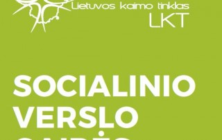 Socialinio_verslo_gaires