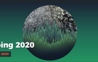 Viskiptathing 2020