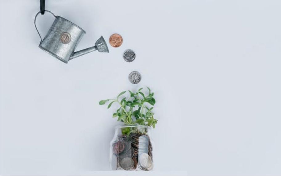 Social Entrepreneurship: How to Become a Changemaker Through Business