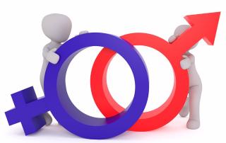 Peggy_Marco Pixabay -gender