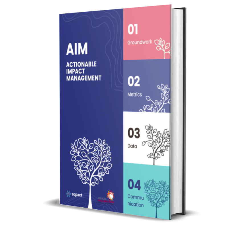 Actionable Impact Management – A Roadmap for Your Organisation